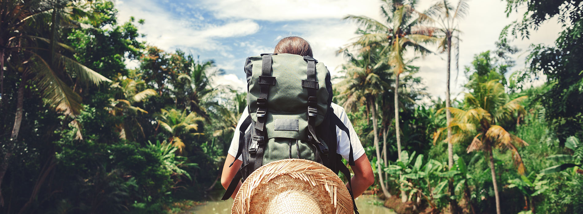 Back of a backpacker in front of a tropical paradise